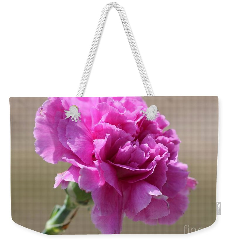 Mccombie Weekender Tote Bag featuring the photograph Lavender Carnation by J McCombie