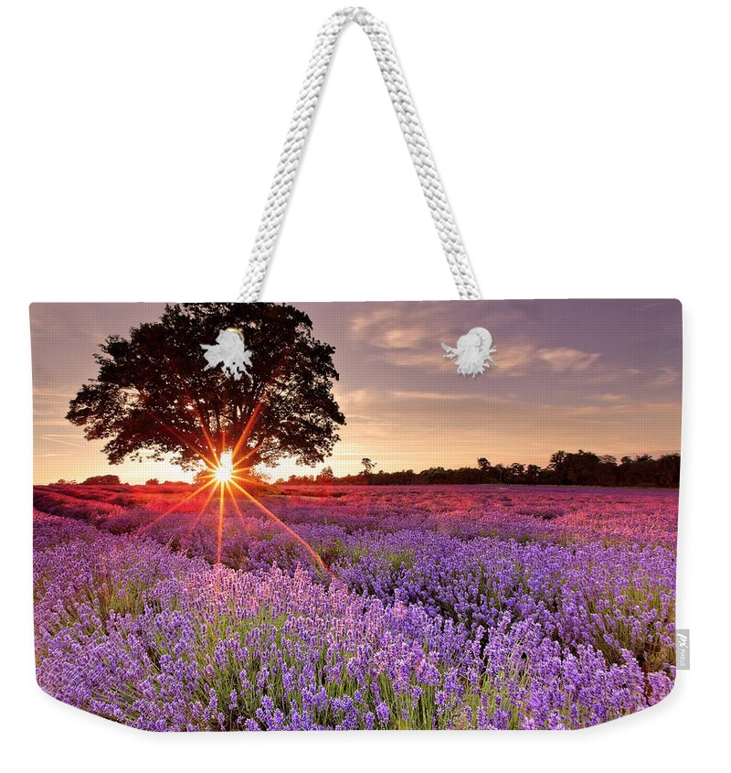 Scenics Weekender Tote Bag featuring the photograph Lavender Field by Sandra Kreuzinger