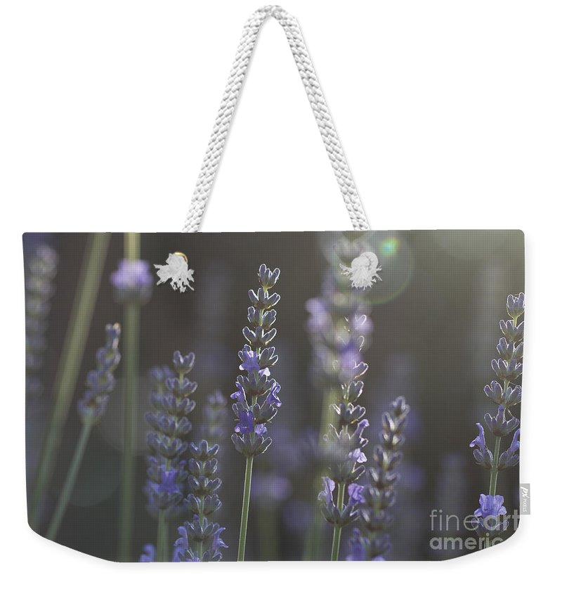Lavender Weekender Tote Bag featuring the photograph Lavender Flare. by Clare Bambers