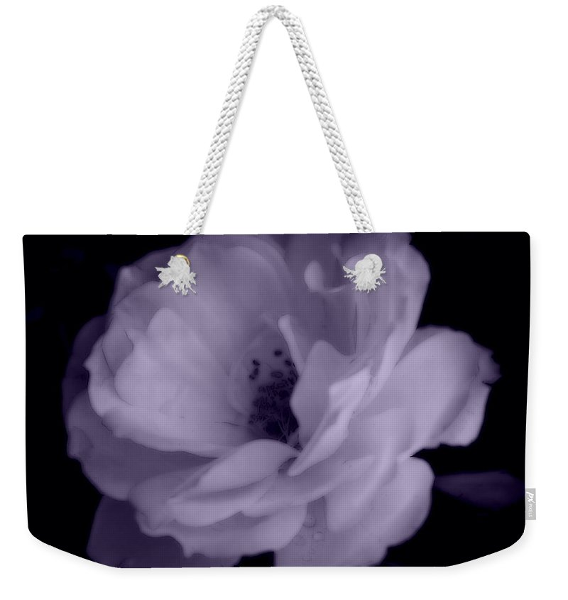 Rose Weekender Tote Bag featuring the photograph Lavender Perfection by Kathy Sampson