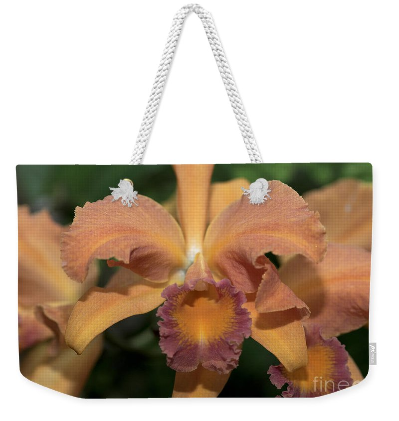 Orchid Weekender Tote Bag featuring the photograph Lc. Roy Mcmillan 9865 by Terri Winkler