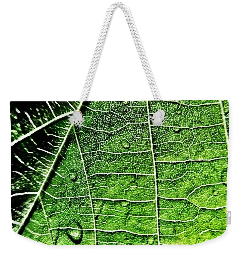Leaf Weekender Tote Bag featuring the photograph Leaf Abstract - Macro Photography by Marianna Mills