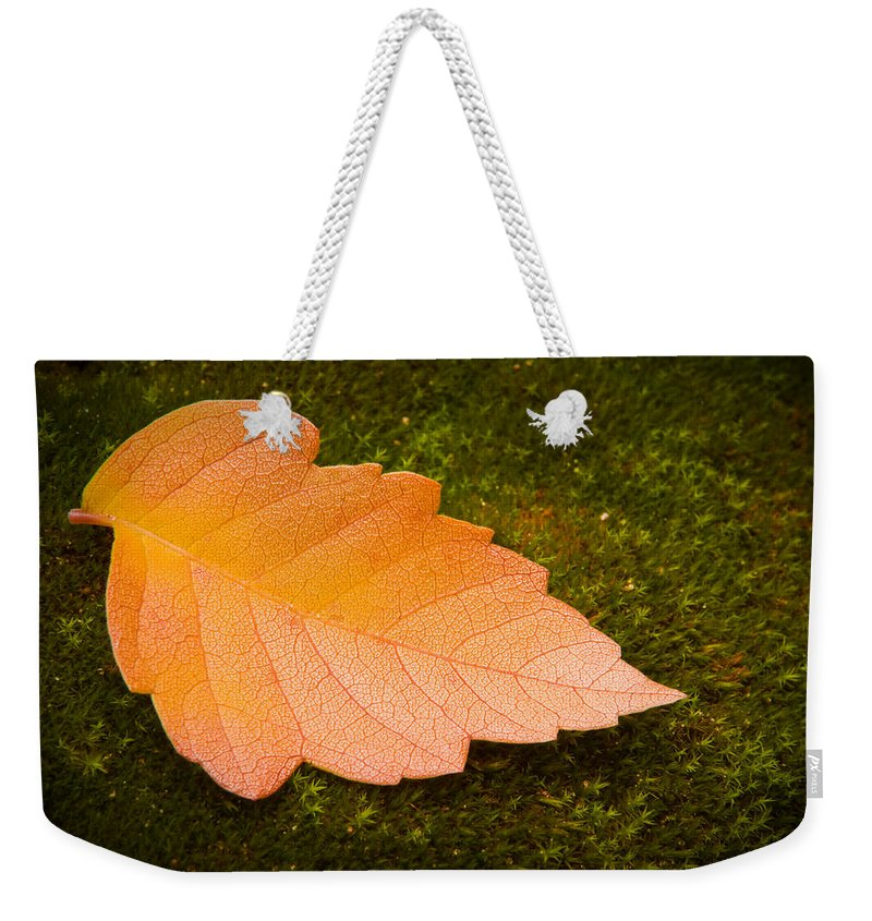 3scape Photos Weekender Tote Bag featuring the photograph Leaf On Moss by Adam Romanowicz