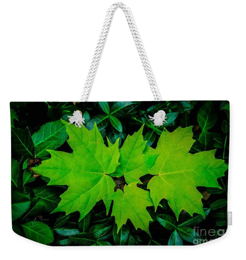 Eaton Rapids Weekender Tote Bag featuring the photograph Leaf Overlay by Grace Grogan