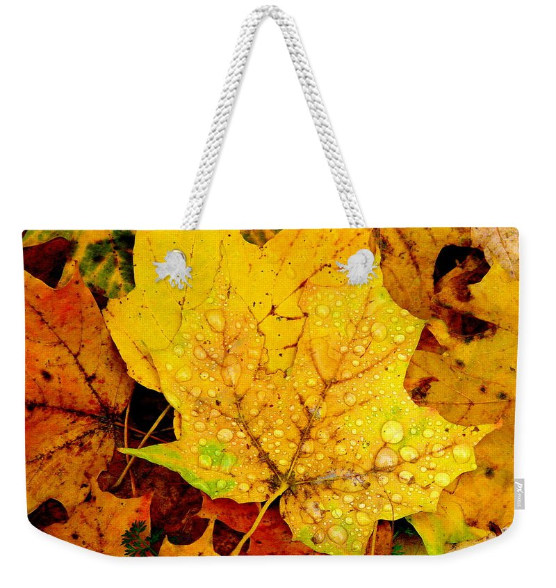 Droplets Weekender Tote Bag featuring the photograph Leaf Portait 1 by Rodney Lee Williams