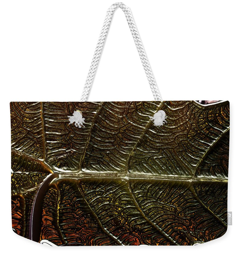 Leaf Weekender Tote Bag featuring the photograph Leafage by Richard Thomas