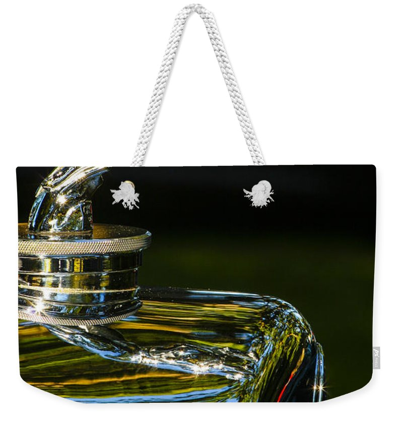 Car Weekender Tote Bag featuring the photograph Leaping Hound by Jean Noren