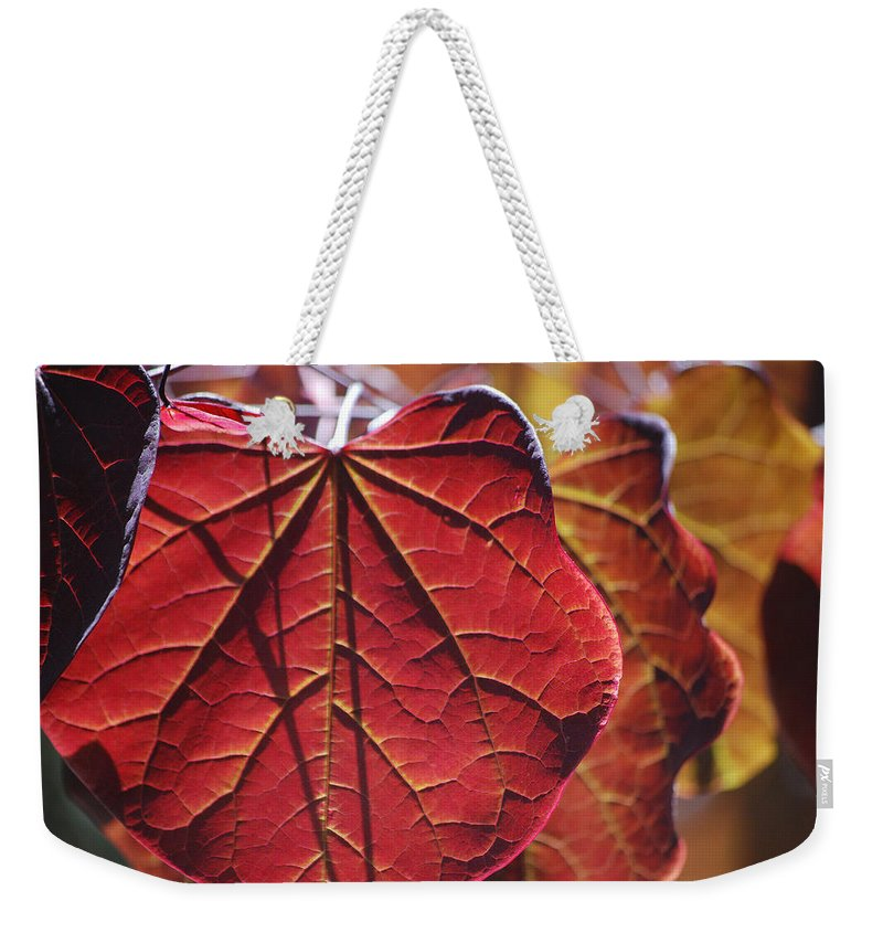 Becky Furgason Weekender Tote Bag featuring the photograph #leave by Becky Furgason