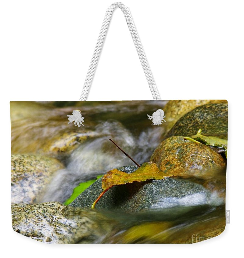 Leaves Weekender Tote Bag featuring the photograph Leaves On The Rocks by Sharon Talson