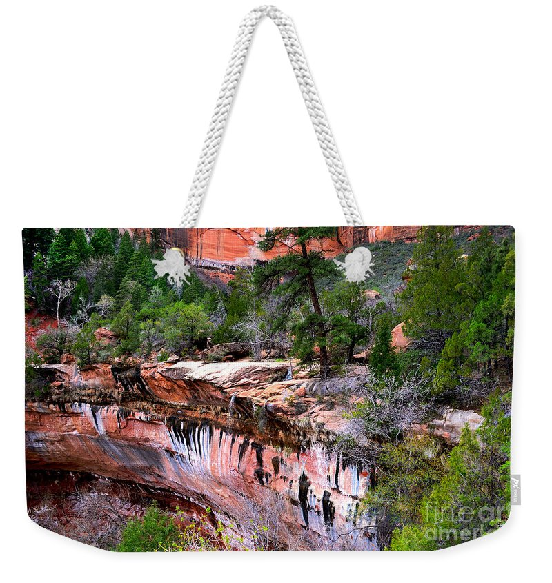 Waterfall Weekender Tote Bag featuring the photograph Ledge At Emerald Pools In Zion National Park by Rincon Road Photography By Ben Petersen
