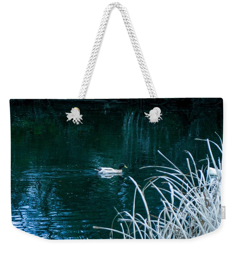 Duck Weekender Tote Bag featuring the photograph Left Behind by Mechala Matthews