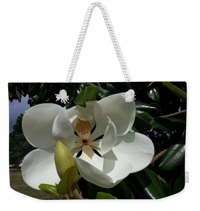 Magnolia Weekender Tote Bag featuring the photograph Lemon Magnolia by Caryl J Bohn