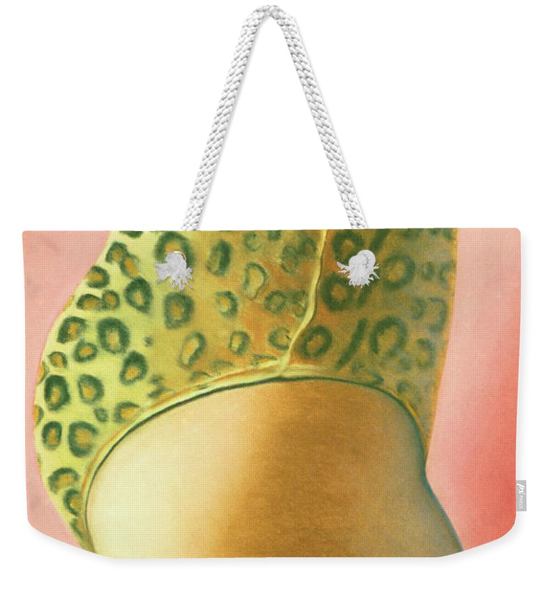 Feminine Weekender Tote Bag featuring the pastel Leopard Suit by Mary Ann Leitch