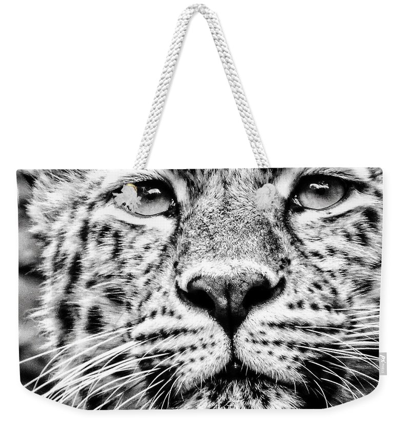 B&w Weekender Tote Bag featuring the photograph Leo's Portrait by Mark Hazelton