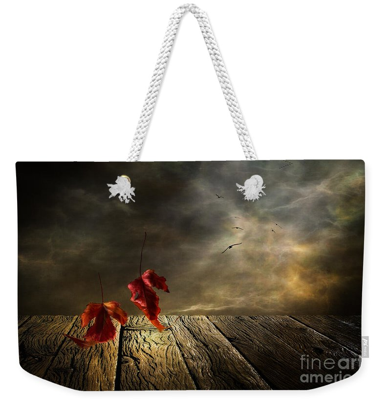 Art Weekender Tote Bag featuring the photograph Lets Twist Again by Veikko Suikkanen