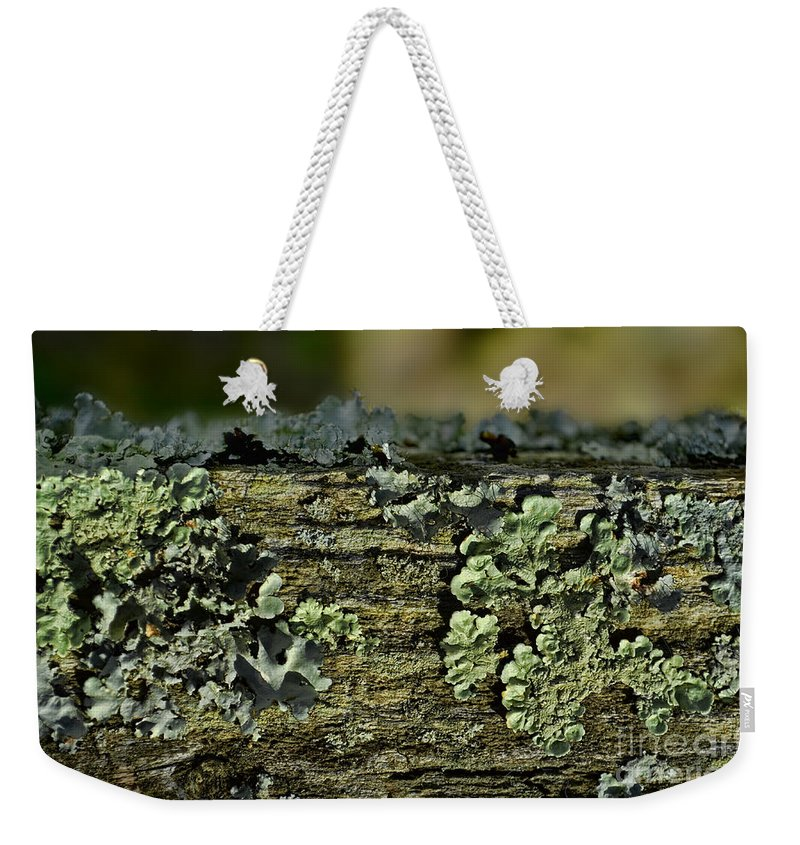 Closeup Weekender Tote Bag featuring the photograph Lichen Macro I by Debbie Portwood