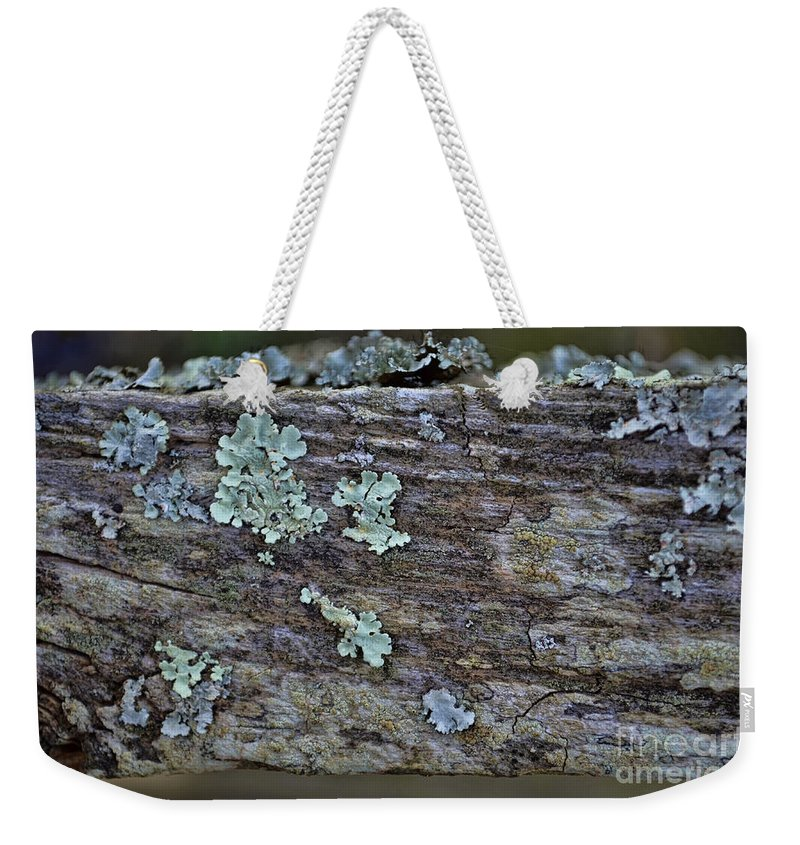 Closeup Weekender Tote Bag featuring the photograph Lichen Macro II by Debbie Portwood