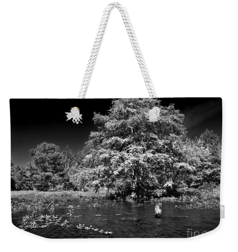 Vernon Lake Weekender Tote Bag featuring the photograph Life In The Shade by Ken Frischkorn