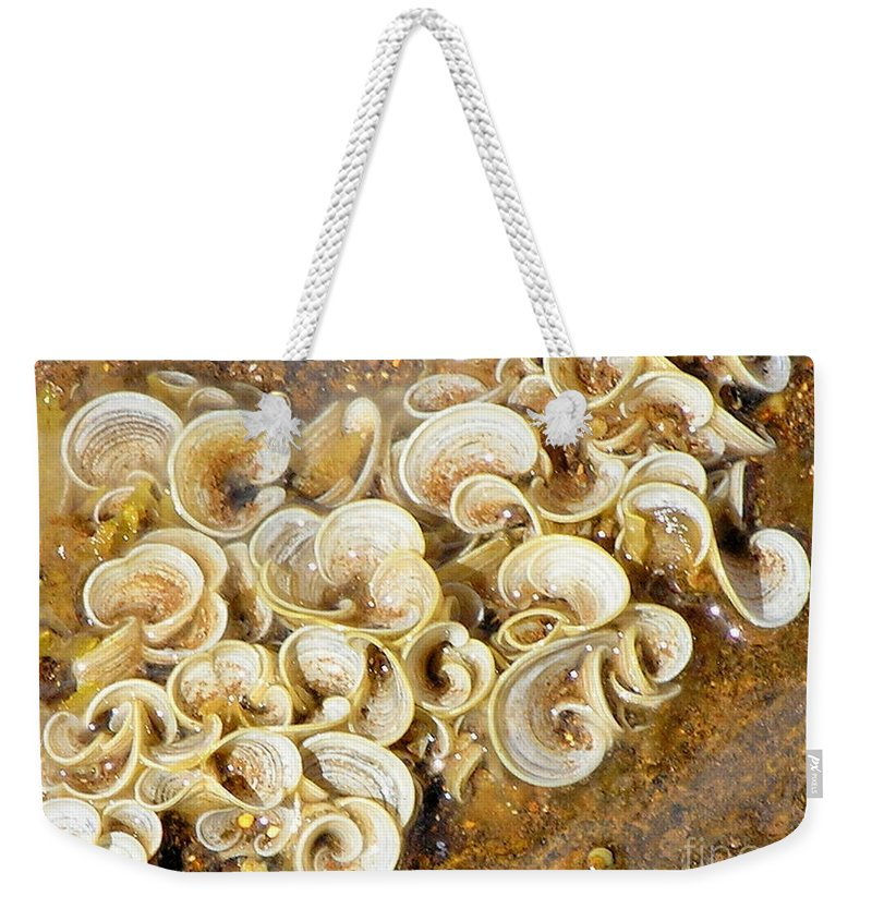 Sea Life Weekender Tote Bag featuring the photograph Life On The Rocks by Mary Deal