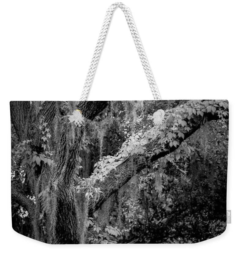 Florida Weekender Tote Bag featuring the photograph Life Remains by Toni Hopper