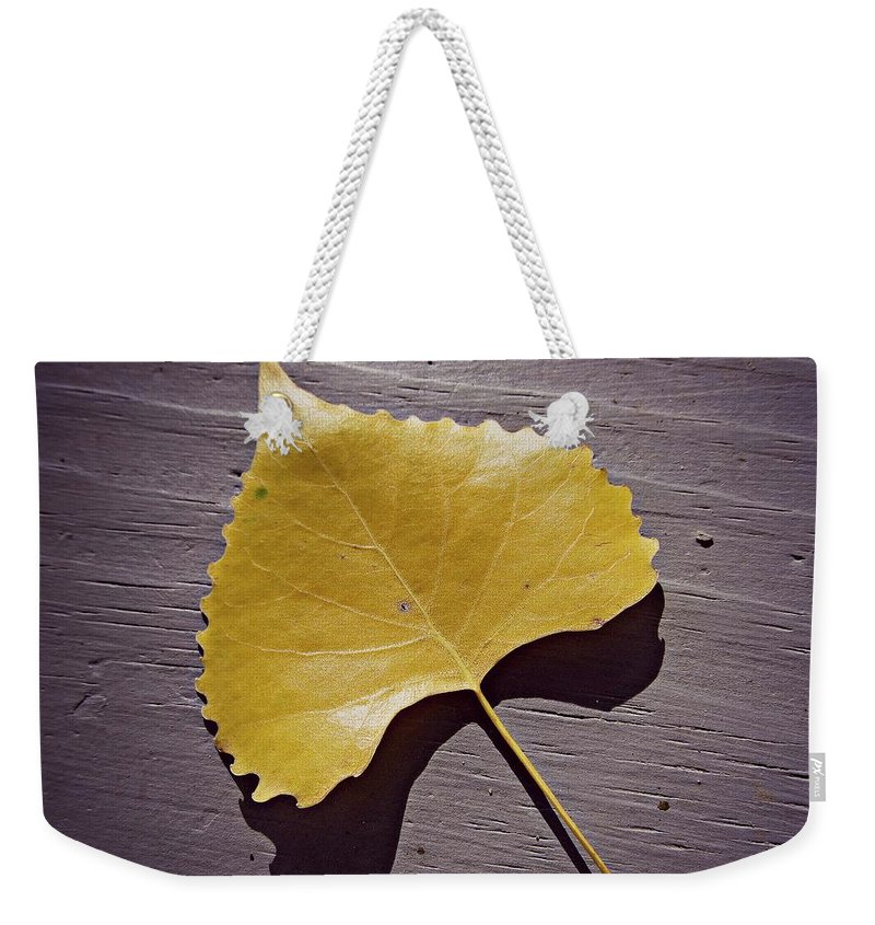 Yellow Weekender Tote Bag featuring the painting Life's Treasures by Robert Nacke