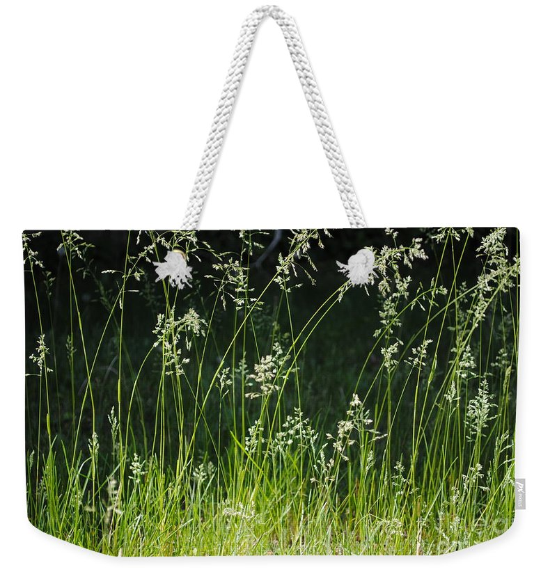 Greens Weekender Tote Bag featuring the photograph Light by Charlotte Stevenson