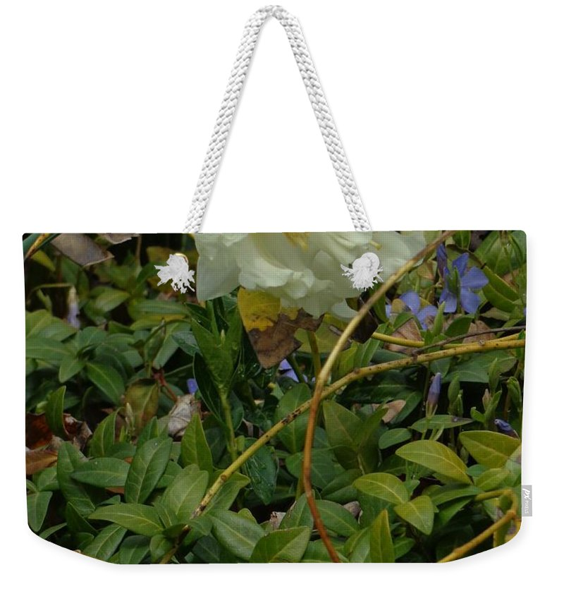 Flowers Weekender Tote Bag featuring the photograph Light Daffodils by Jannice Walker