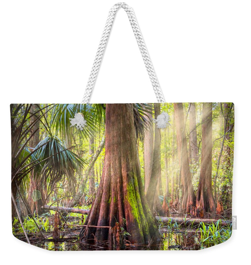 Clouds Weekender Tote Bag featuring the photograph Light In The Hammock by Debra and Dave Vanderlaan