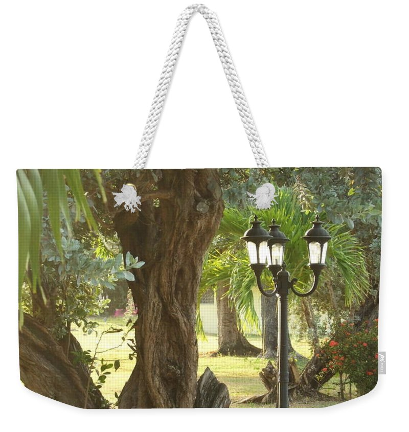 Weekender Tote Bag featuring the photograph Light Post by Katerina Naumenko