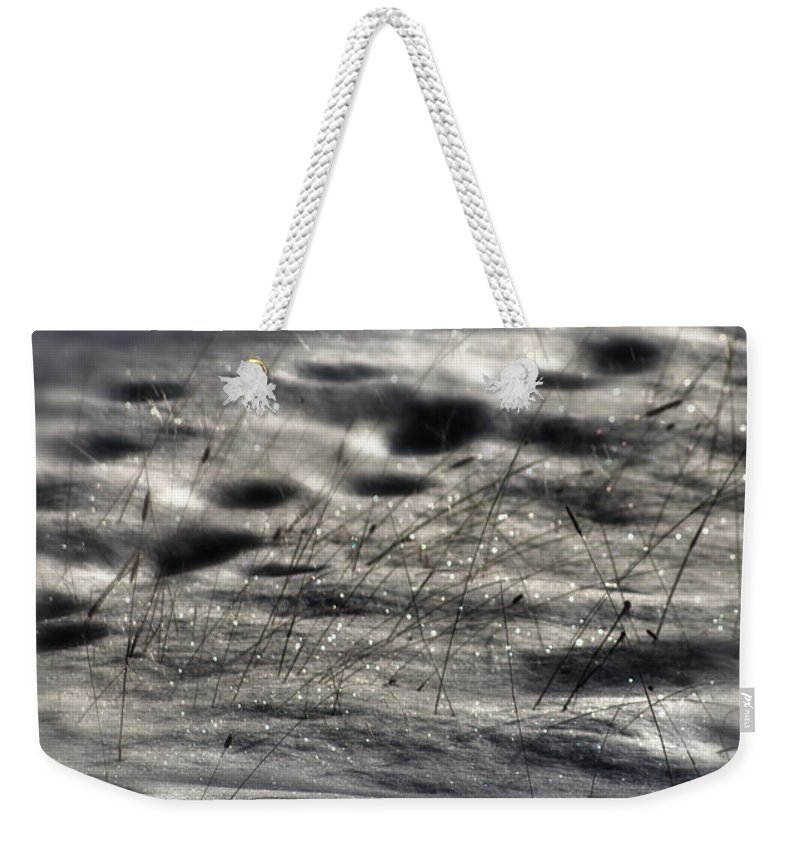 Landscape Weekender Tote Bag featuring the photograph Light The Way by Janie Johnson