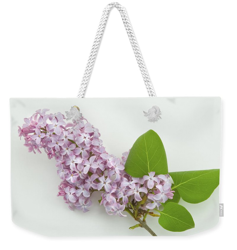 Lilac Weekender Tote Bag featuring the photograph Lilac Flowers - White Background by Keith Webber Jr