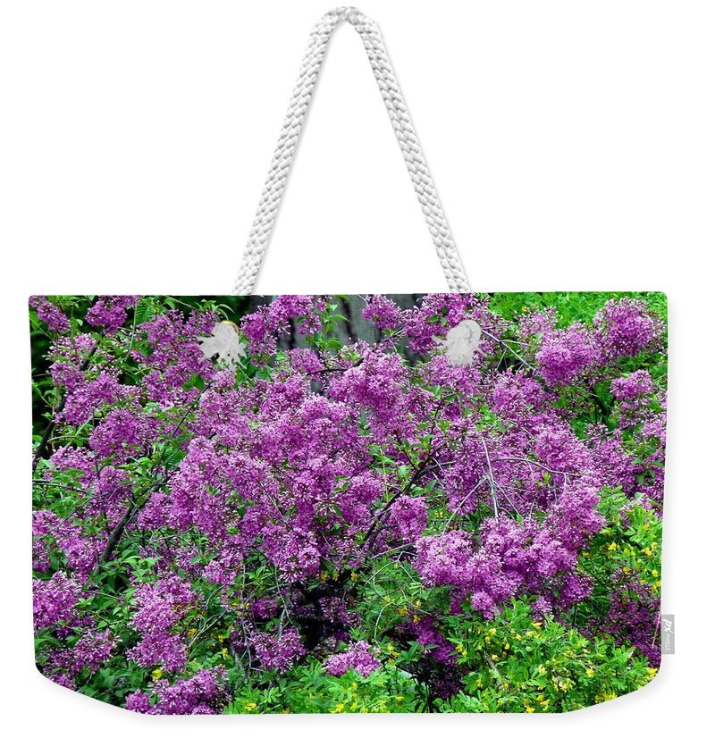 Lilac Laneway Weekender Tote Bag featuring the photograph Lilac Laneway by Will Borden