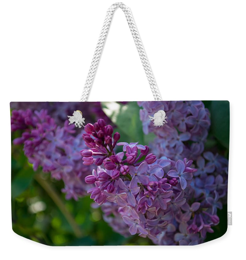 Nature Weekender Tote Bag featuring the photograph Lilac by Shelly Fox
