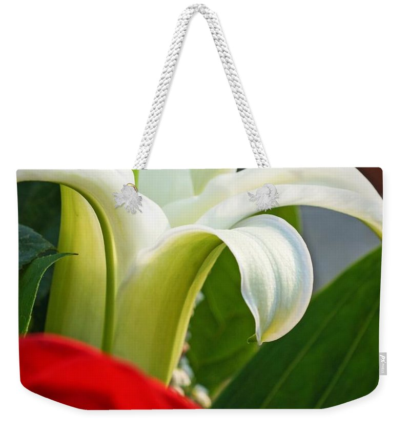 Lilly And Rose Weekender Tote Bag featuring the photograph Lilly And Rose by Photographic Arts And Design Studio