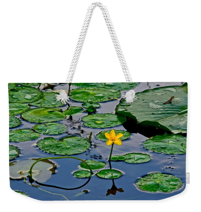 Lilly Weekender Tote Bag featuring the photograph Lilly Pad Pond by Frozen in Time Fine Art Photography