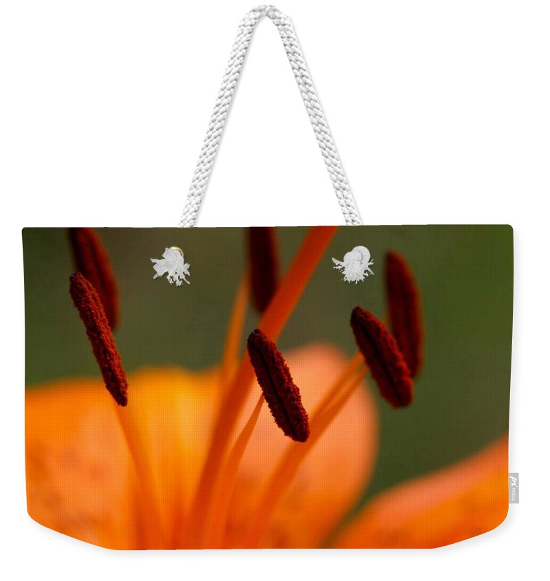 Flower Weekender Tote Bag featuring the photograph Lily by Carol Lynch