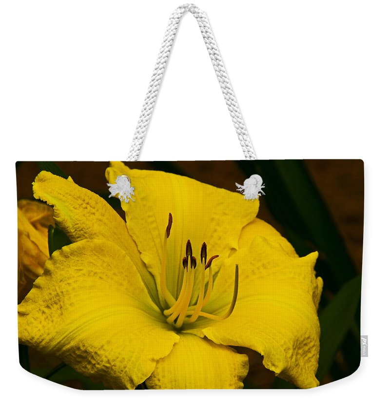 Lily Weekender Tote Bag featuring the photograph Lily by David Campbell