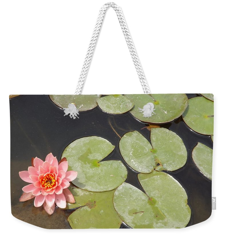 Pink Weekender Tote Bag featuring the photograph Lily Is Lookin Right At Me by Caryl J Bohn