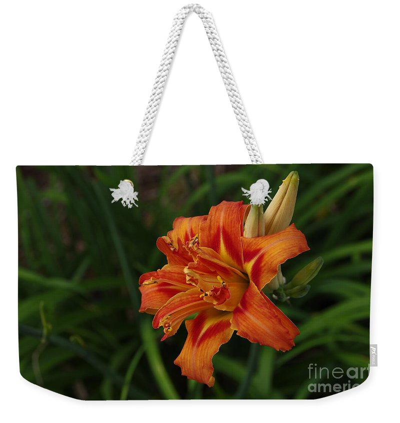 Flowers Weekender Tote Bag featuring the photograph Lily Of Lilies by Deborah Bowie