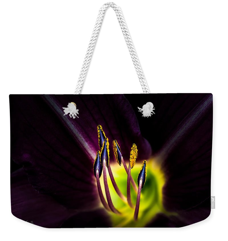 Flower Weekender Tote Bag featuring the photograph Lily Of The Forest by Bob Orsillo