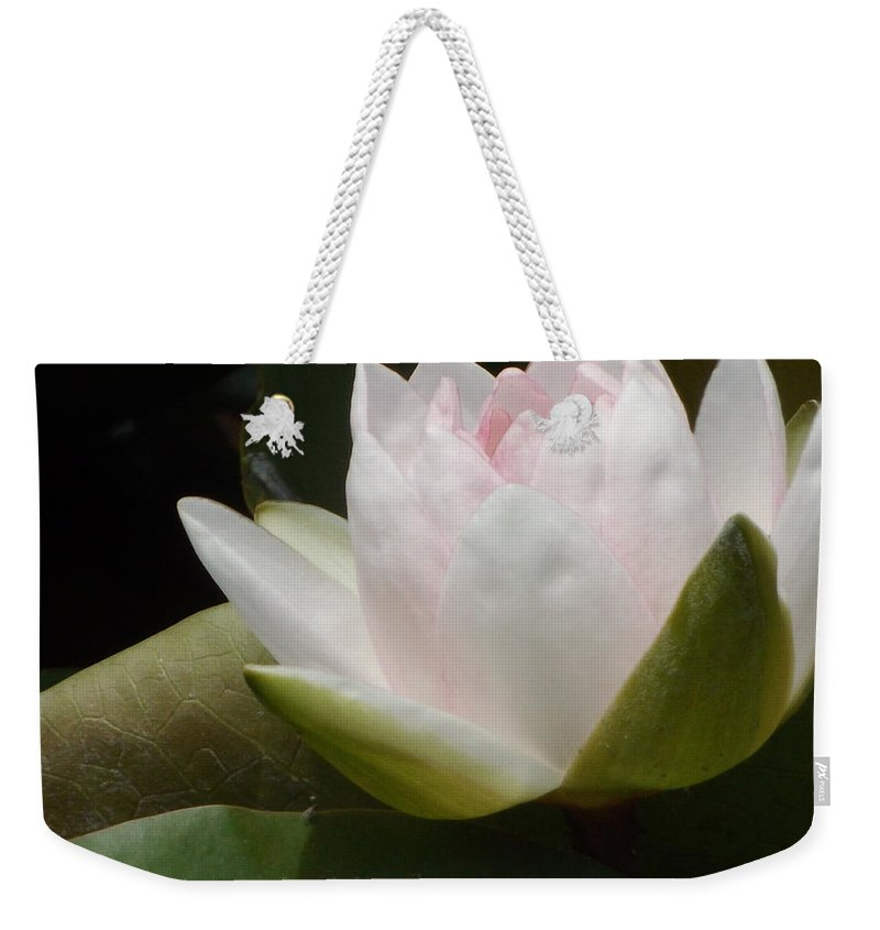 Pink Weekender Tote Bag featuring the photograph Lily On Her Wedding Day by Caryl J Bohn
