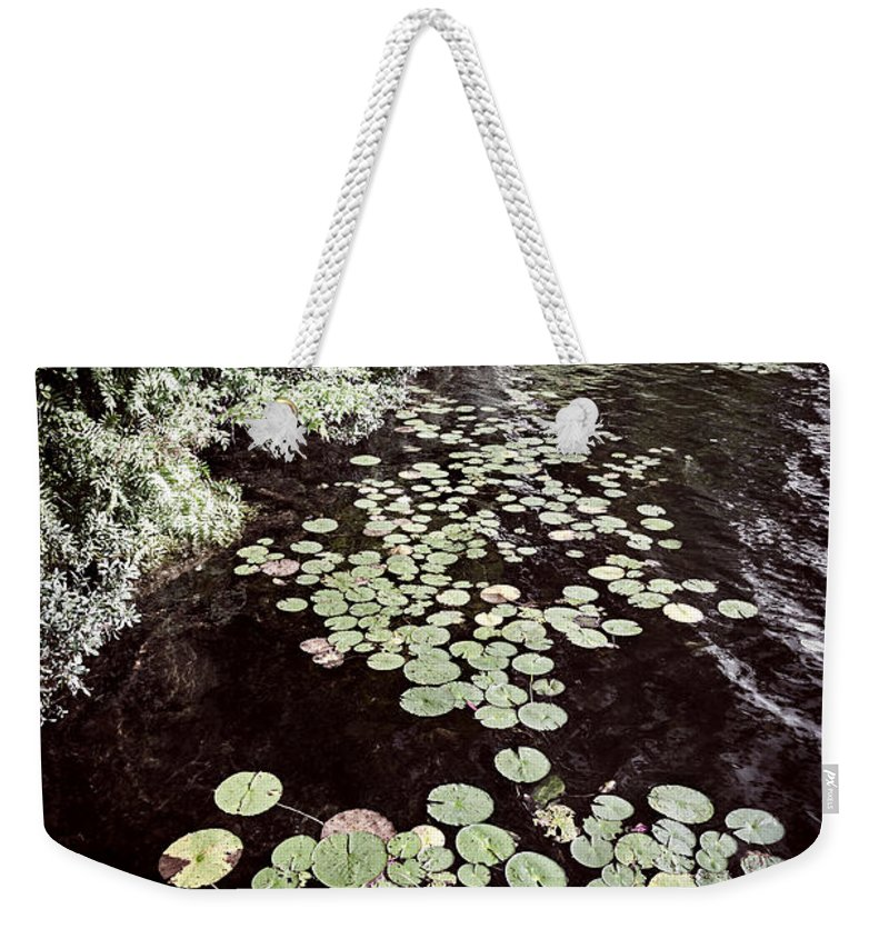 Lake Weekender Tote Bag featuring the photograph Lily Pads On Dark Water by Elena Elisseeva