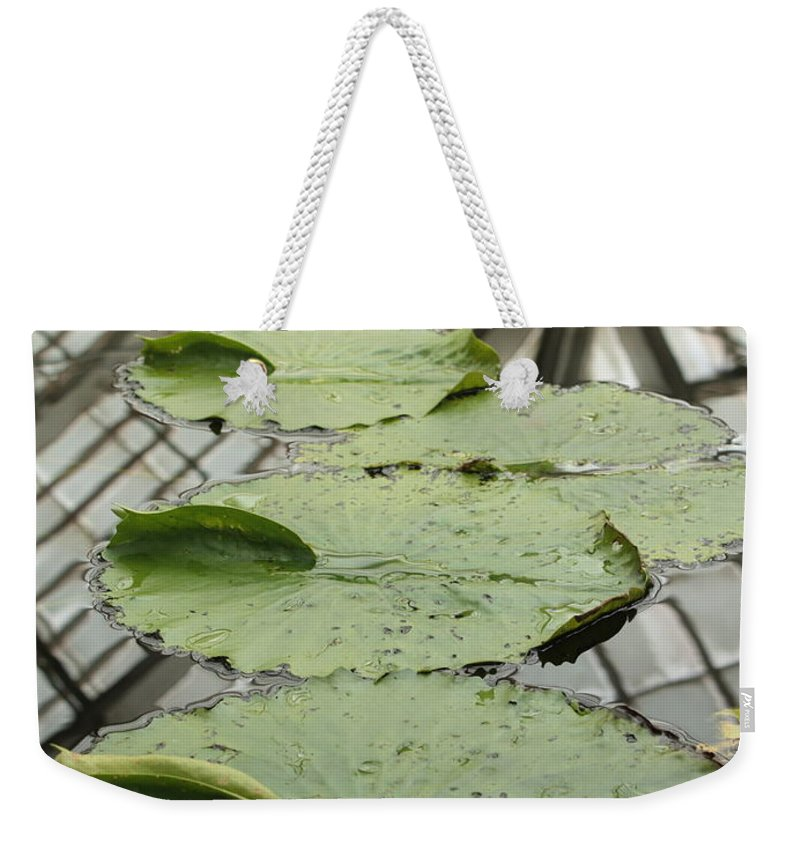 Lily Pads Weekender Tote Bag featuring the photograph Lily Pads With Reflection Of Conservatory Roof by Carol Groenen