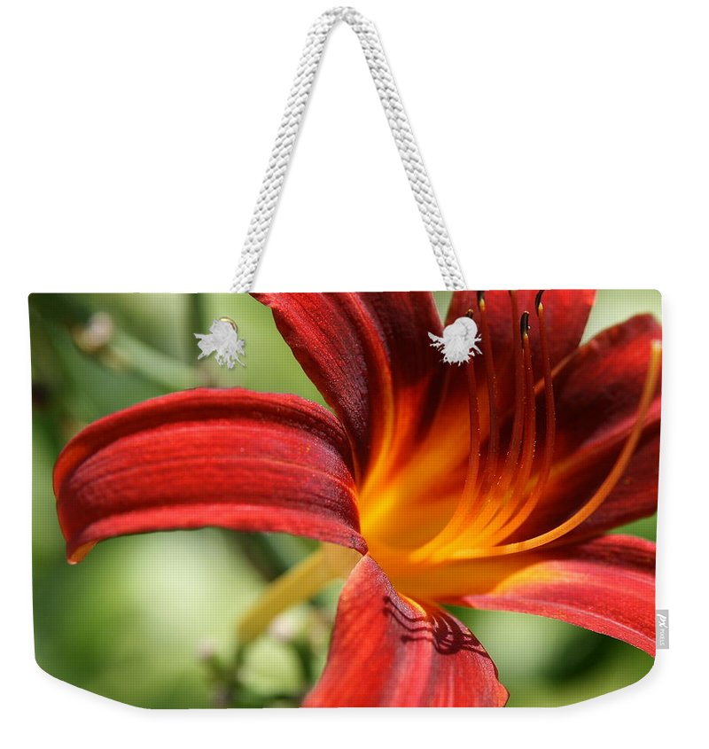 Lily. Lily Photo Weekender Tote Bag featuring the photograph Lily Red by Neal Eslinger