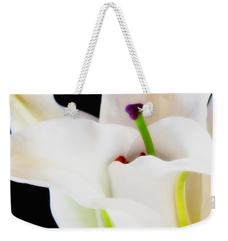 Botanicals Weekender Tote Bag featuring the photograph Lily Solitaire by Linda Dunn