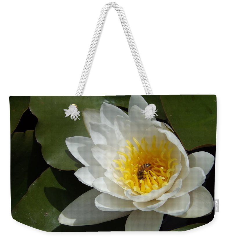 White Weekender Tote Bag featuring the photograph Lily's Sweet Visitor by Caryl J Bohn