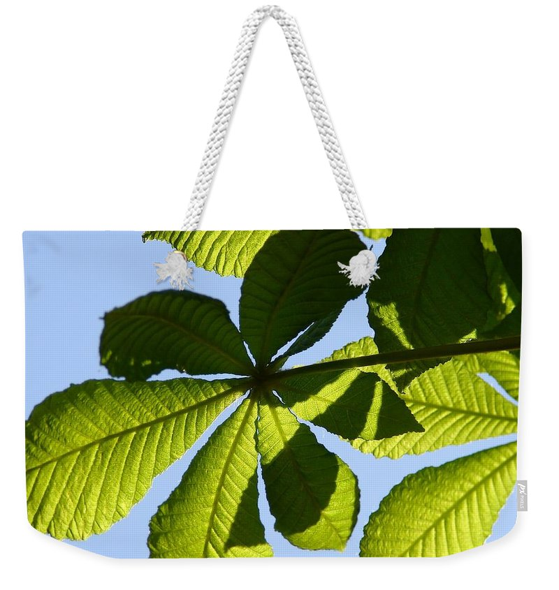 Lime Weekender Tote Bag featuring the photograph Lime by Carol Lynch