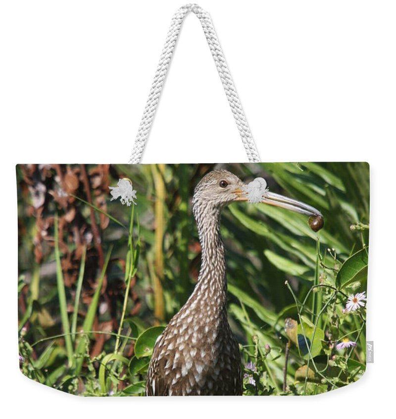 Limpkin Weekender Tote Bag featuring the photograph Limpkin With An Apple Snail by Christiane Schulze Art And Photography