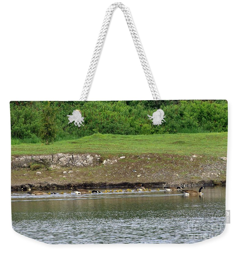 Canada Geese Weekender Tote Bag featuring the photograph Line Dance by Sharon Talson