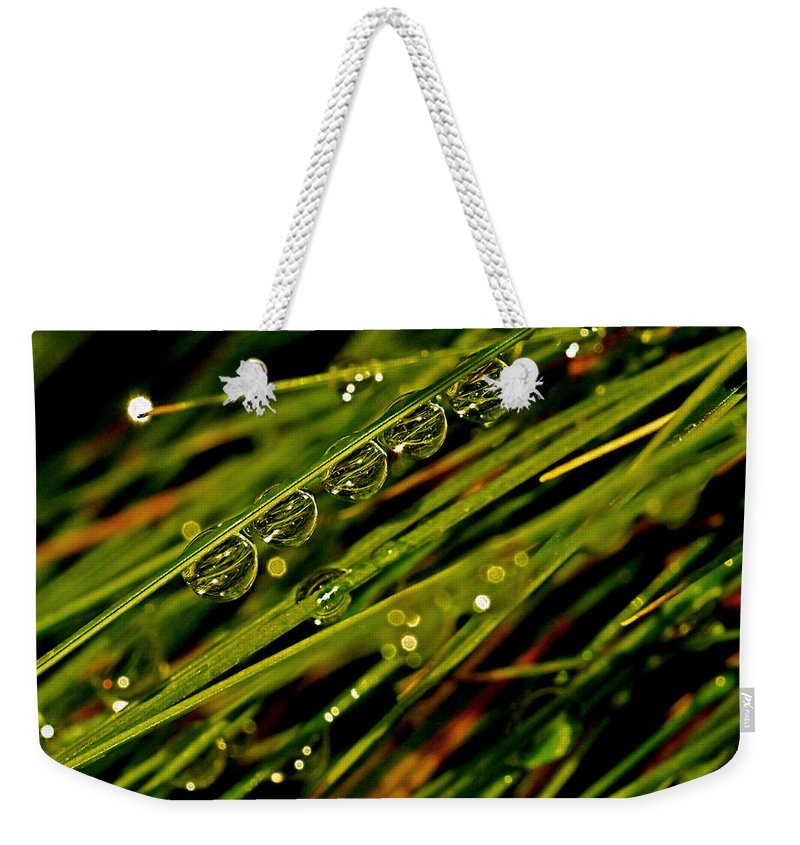 Green Weekender Tote Bag featuring the photograph Lineup by Rona Black